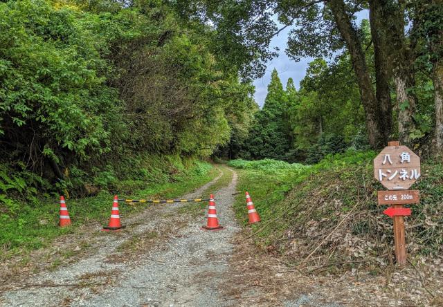 Con đường ít người qua lại kèm tiếng lá khô lạo xạo dưới chân không dành cho du khách yếu bóng vía. Ảnh: SoraNews24