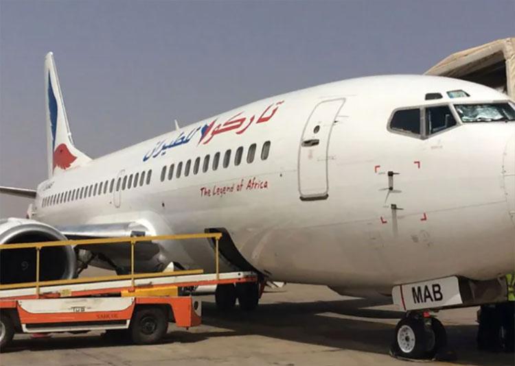 Máy bay phải hạ cánh khẩn xuống sân bay tại thủ đô Khartoum để bắt mèo. Ảnh: News