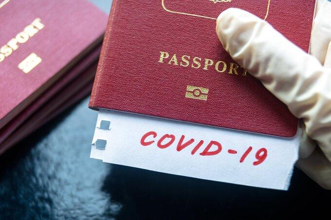 Giữa tháng 1/2021, hãng hàng không American Airlines ra mắt hộ chiếu sức khỏe trên điện thoại mang tên VeriFLY, cho phép du khách đăng kết quả xét nghiệm nCoV âm tính. Ảnh: Periódico Viaje.