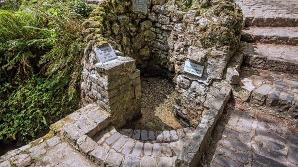 Số ít Sheela-na-gi còn sót lại ở các giếng thánh. Có hàng nghìn giếng thánh trên khắp vùng nông thôn Ireland. Thường sẽ có một cây điều ước gần đó, nơi các tín đồ treo lên những lời cầu nguyện. Ảnh: Malcolm Walker/Alamy