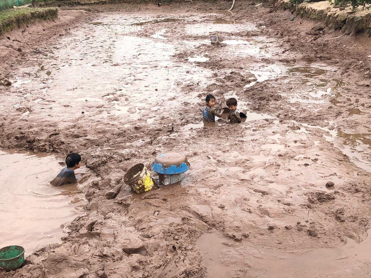 Trẻ nhỏ bắt cá khi tham quan nông trại. Ảnh: NVCC.