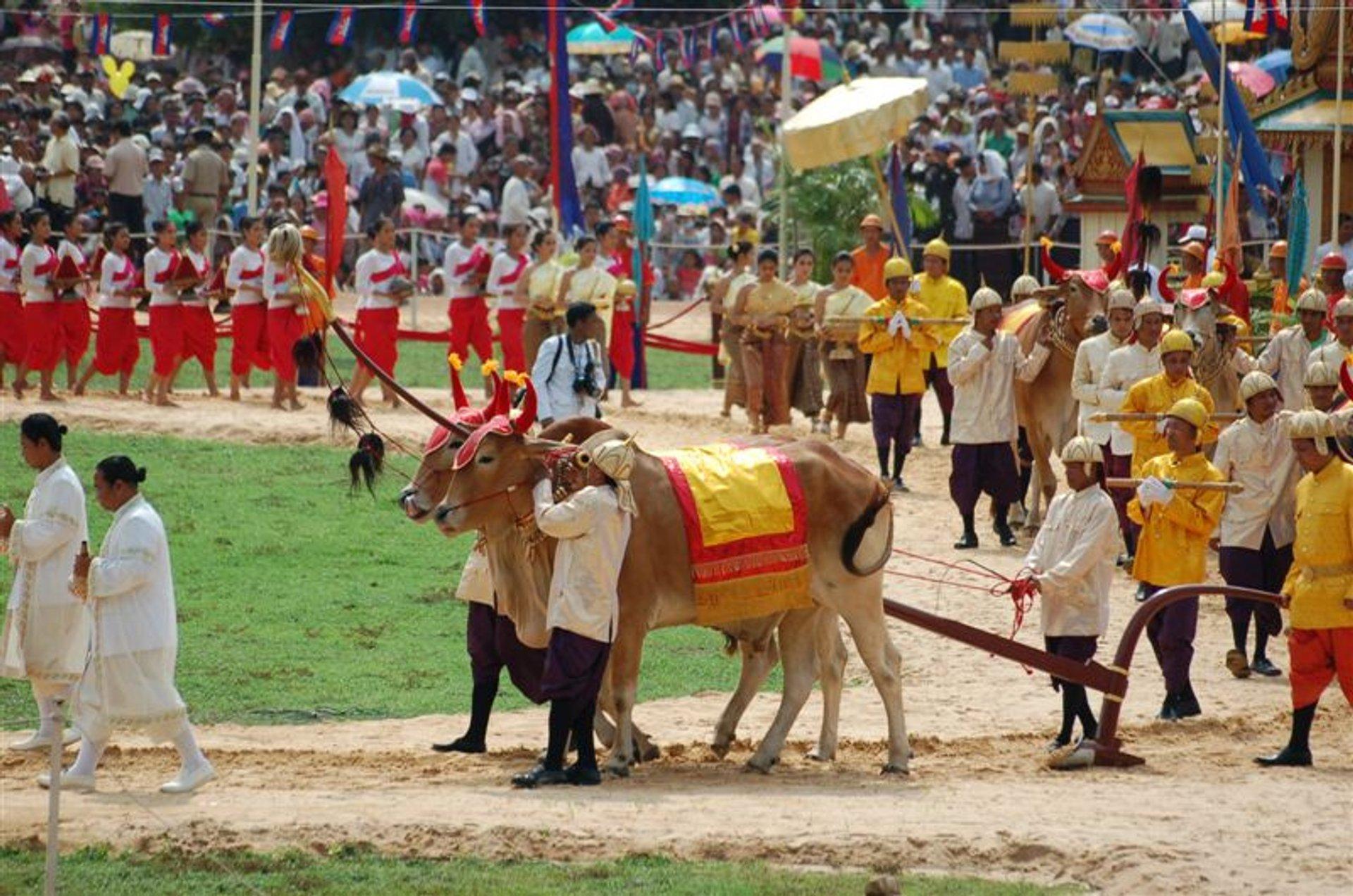 Quốc gia này có nhiều lễ hội lớn, hút khách trước đại dịch như lễ hội Phật giáo Meak Bochea, lễ hội năm mới Choul Chnam Thmey, lễ hội Cày bừa hoàng gia Pithi Chrat Preah Neanng Korl (ảnh), lễ hội cúng 7 đời tổ tiên Pchum Ben... Ảnh: Rove