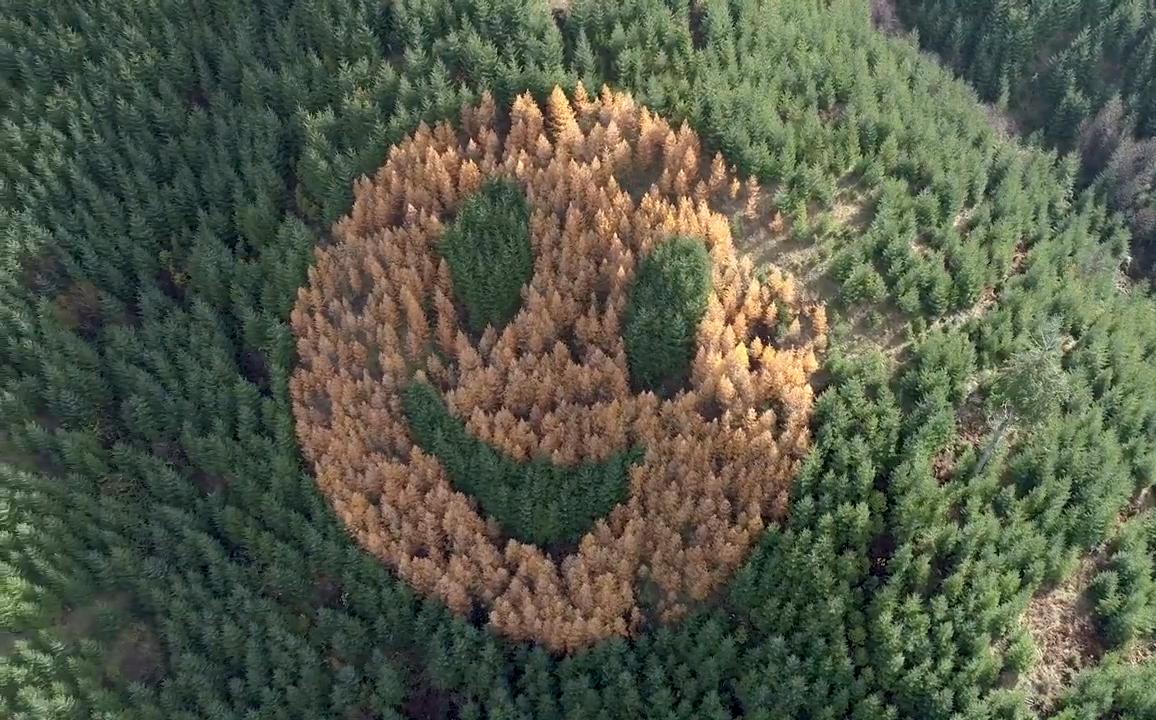 Gương mặt cười của Oregon có thể dần mất đi hình dáng ban đầu theo thời gian. Ảnh: The Oregonian