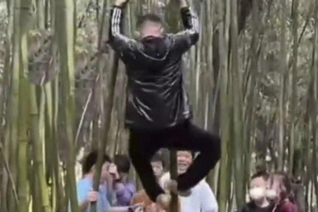 Các vị khách tập thể dục bên rừng tre. Ảnh: Handout