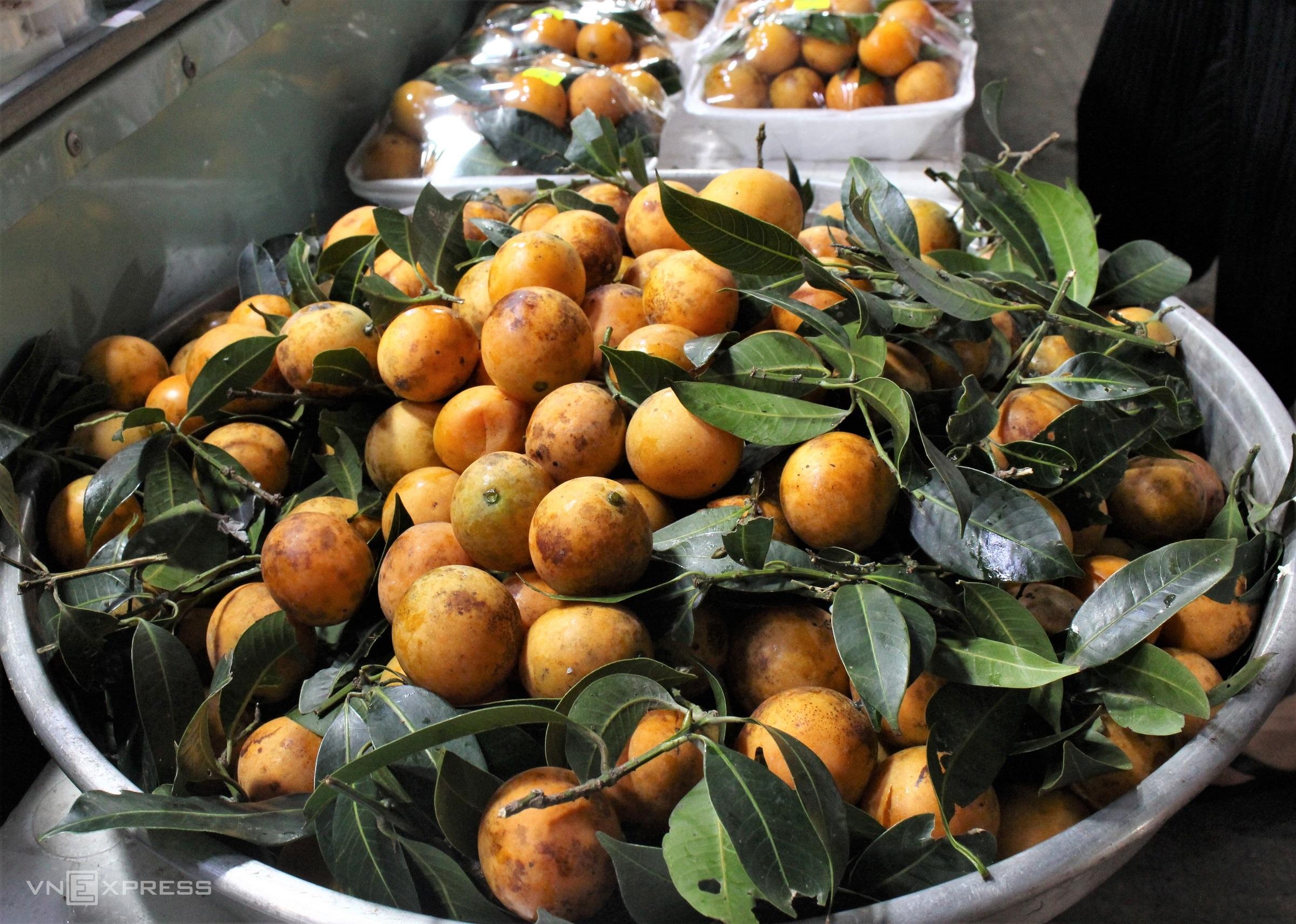 Các loại trái cây tươi trên đảo cũng được bán theo mùa. Hiện là mùa thanh trà ở Phú Quốc, loại trái này mọc tự nhiên trên núi nên còn có tên là sơn trà.Thanh trà trên đảo có trái tròn, căng mọng và màu sậm hơn loại trái trên đất liền, vị thanh chua, ngọt dịu. Du khách có thể chế biến nhiều món ngon từ thanh trà như nấu canh chua, kho cá, dầm đá đường, làm mứt hoặc chấm muối ớt ăn tươi.
