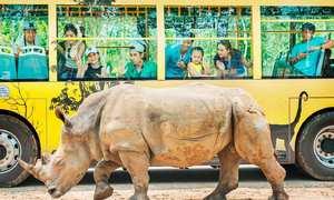 Công viên 'thú thả người nhốt' ở Phú Quốc