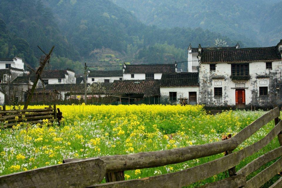Kiến trúc Huy Châu còn được biết đến với tên gọi kiến trúc Huy Phái, tồn tại từ thời Minh - Thanh. Đây là trường phái quan trọng bậc nhất trong kiến trúc truyền thống của người Hán, một phần tất yếu cấu thành nên văn hóa địa phương. Ảnh: Sohu