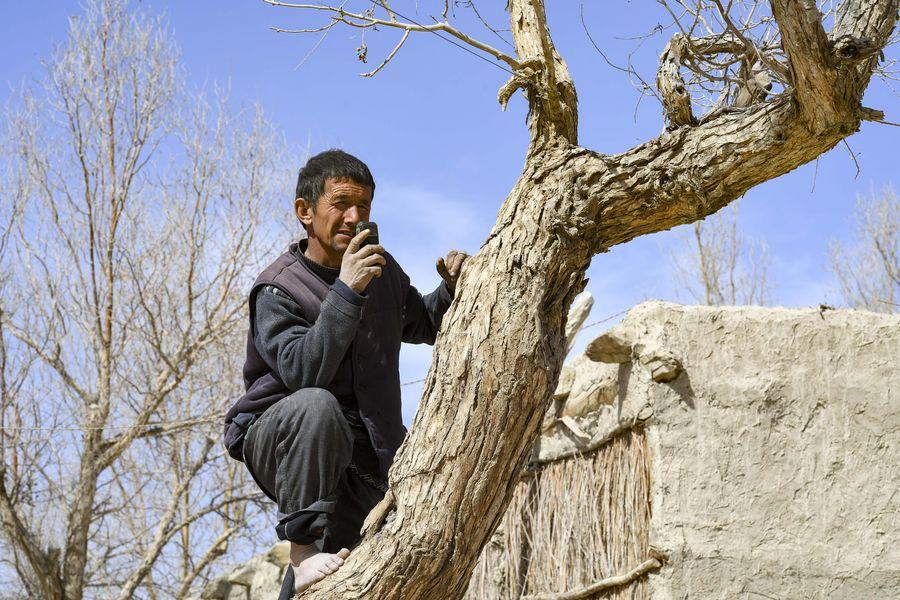 Một số người dân chỉ bắt đầu dùng điện thoại di động từ năm 2016, và thường phải trèo lên cao để bắt sóng.