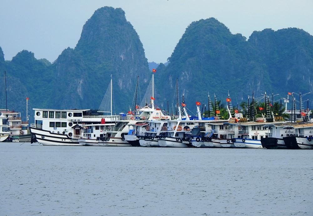 Hơn 500 tàu du lịch hoạt động trên vịnh Hạ Long, Bái Tử Long vẫn đang nằm bờ dù đã được hoạt động trở lại từ trưa 8/6. Ảnh: Minh Cương