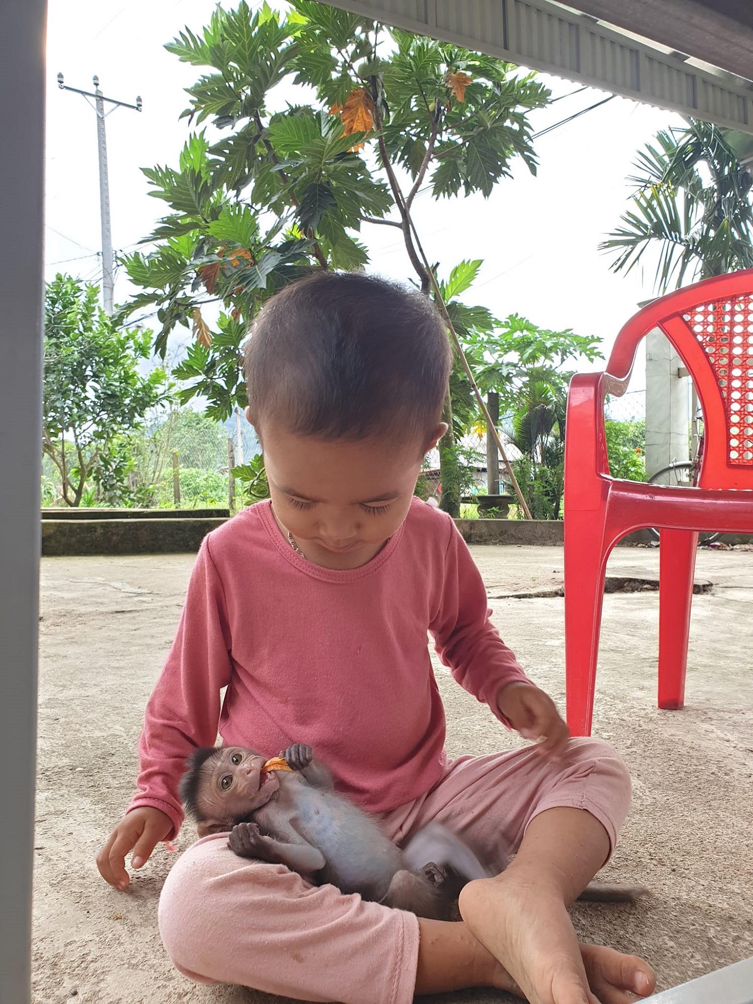Chó vàng hay khỉ con đều là những con vật được gia đình chuộc hoặc chữa bệnh trong suốt hành trình. Ảnh: NVCC.
