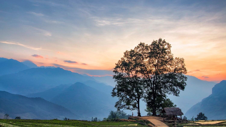 Cây song song là tên gọi du khách đặt cho điểm ngắm cảnh ở Choản Thèn. Tháng 6/2021, UBND tỉnh Lào Cai ra quyết định công nhận thôn Choản Thèn là điểm du lịch. Ảnh: Lê Quang Long.