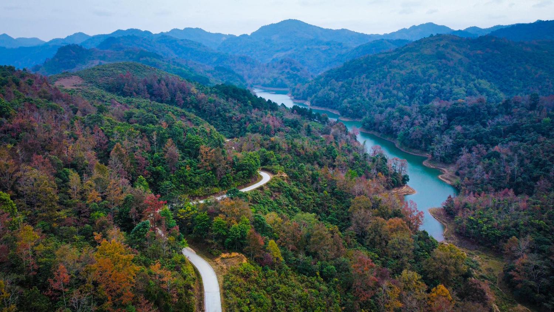 Mùa cây lá đỏ, vàng ở hồ Bản Viết. Ảnh: Phạm Hữu Tuyền.