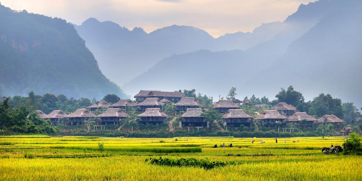 Các địa phương như Quảng Ninh, Vĩnh Phúc đang mở lại hoạt động du lịch nổi tỉnh, khi một số khu nghỉ dưỡng ở Sa Pa (Lào Cai) và Hòa Bình đang mở đón khách ngoại tỉnh có kết quả xét nghiệm âm tính SAR-CoV-2.