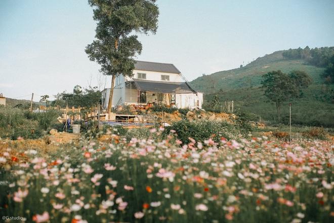 Khu farmstay giữa vườn hoa của vợ chồng Hương.