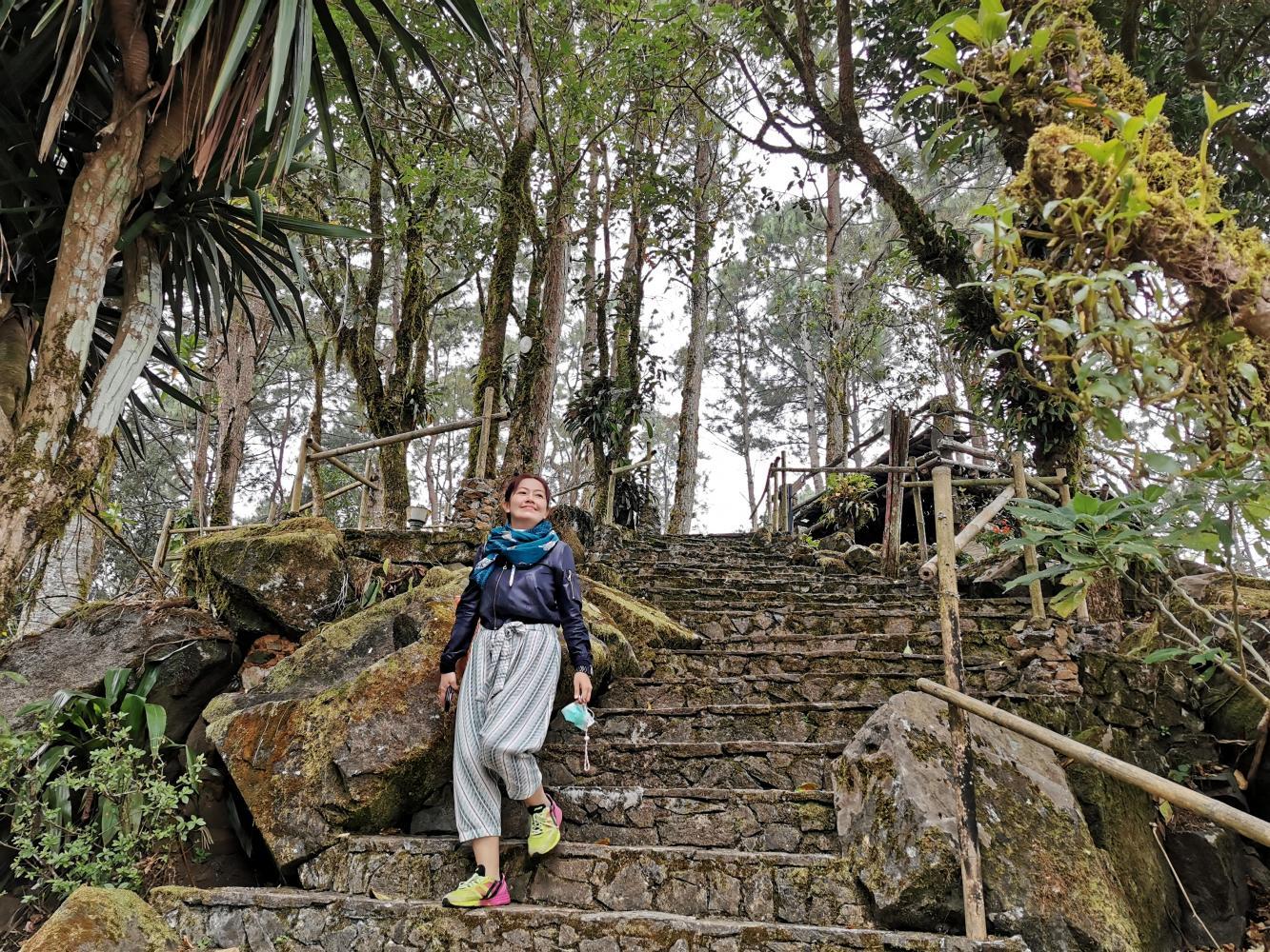 Một du khách đang ngắm cảnh tại vườn thực vật Mae Fah Luang ở Chiang Rai. Ảnh: Pongpet Mekloy/Bangkok Post